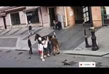 شاهد: شاب يحاول العبور من تحت الحصان - صحيفة هتون الدولية
