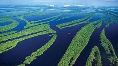 تعرف علي اعرض نهر في العالم -صحيفة هتون الدولية