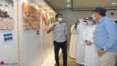 افتتاح المعرض الفوتوغرافي «سُلوك الطيور» -صحيفة هتون الدولية