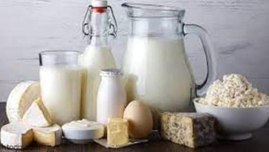 فوائد الكالسيوم المختلفة لصحة الجسم -صحيفة هتون الدولية