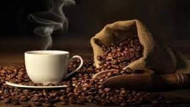 فوائد القهوة لصحة الجسم -صحيفة هتون الدولية-