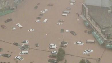 غرف السيارات في الصين - صحيفة هتون الدولية