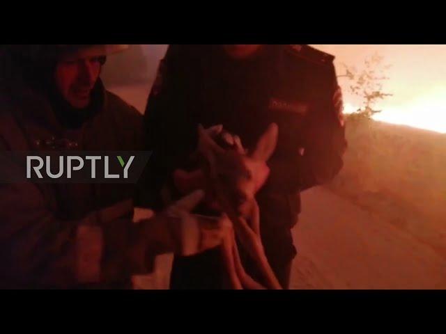 شاهد: إنقاذ غزال صغير من النيران - صحيفة هتون الدولية