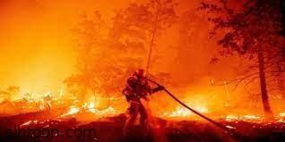 شاهد: محاولة إطفاء حرائق أوريغون - صحيفة هتون الدولية