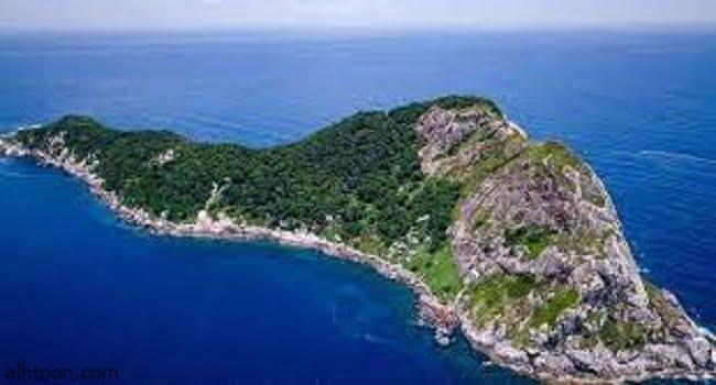 جزيرة الثعابين في البرازيل -صحيفة هتون الدولية