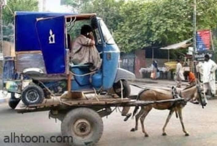 صور مضحكة لا تفوتك -صحيفة هتون الدولية