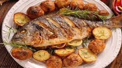 آثار تناول السمك يومياً على صحتك -صحيفة هتون الدولية