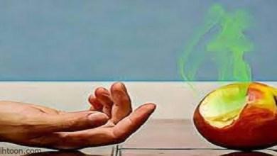 ما هى مصادر تلوث الغذاء؟ -صحيفة هتون الدولية-
