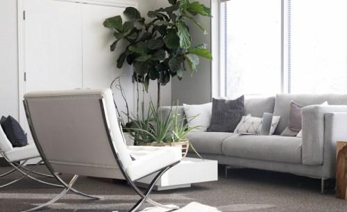 living-room2-free-img