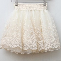 skirt-new-2014-saia-korean-full-lace-embroidery-tulle-skirt-Mini-skirts-fashion-women-lace-skirts-1