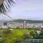 Cafes to visit in Wellington, New Zealand