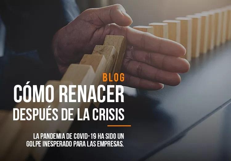 CÓMO RENACER DESPUÉS DE LA CRISIS