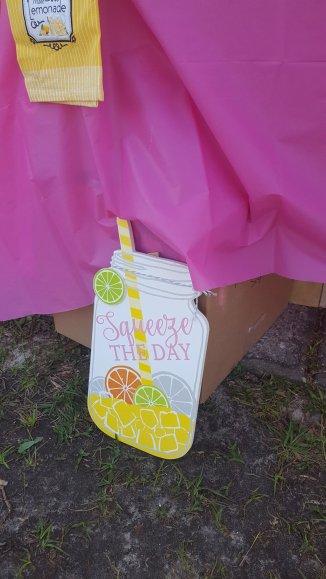 lemonade-squeeze