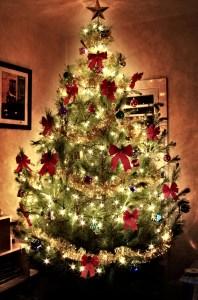 glowing-christmas-tree-1182733-639x967