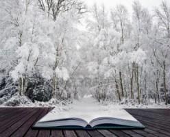 Livre neige