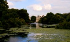 A shot in St. James Park across the water.