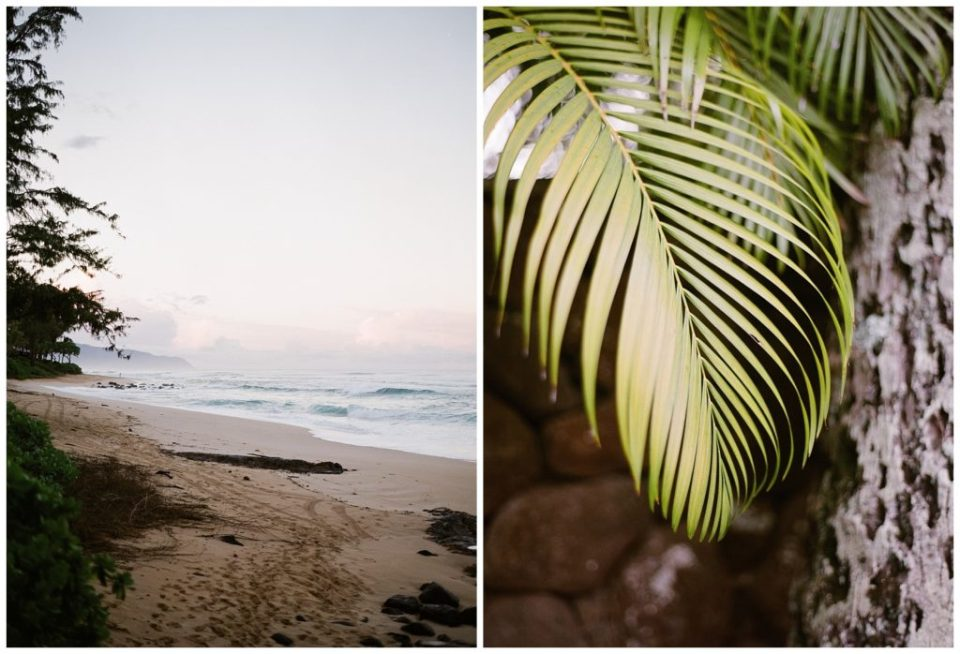 Hawaii Luxury Wedding Photographer