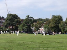 Nice game of cricket