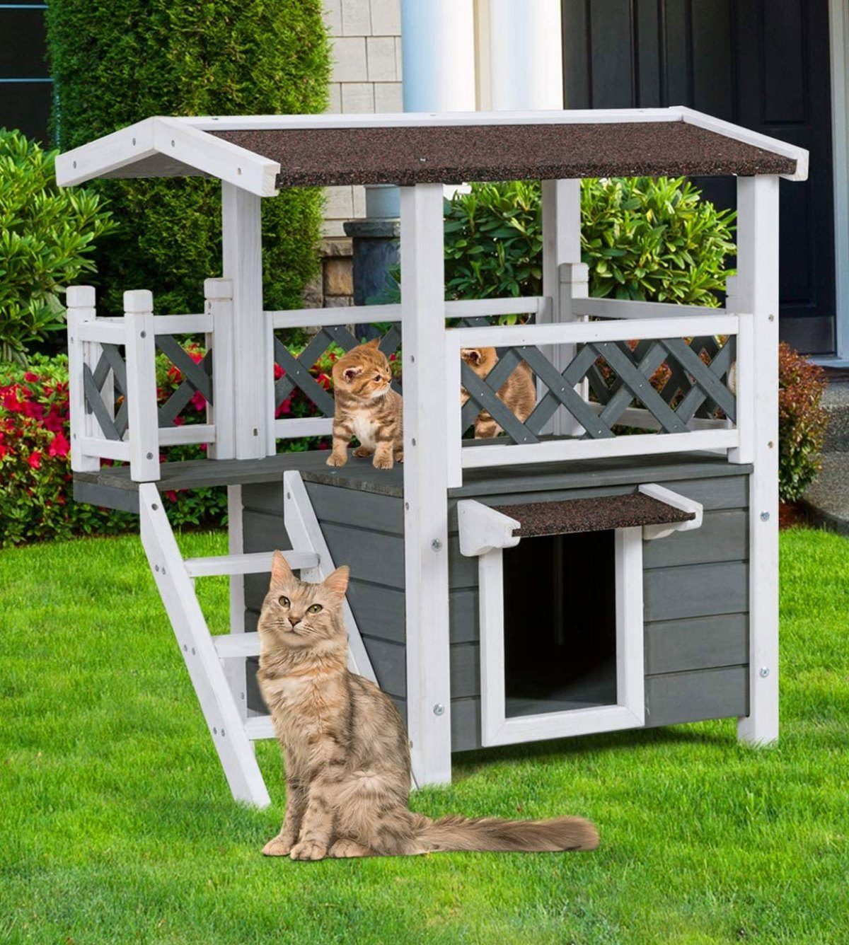 diy outdoor cat house