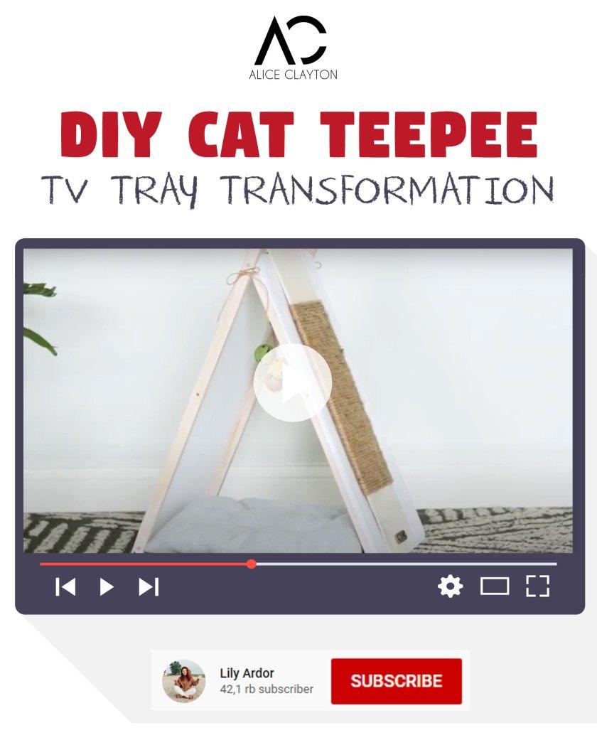 cat teepee