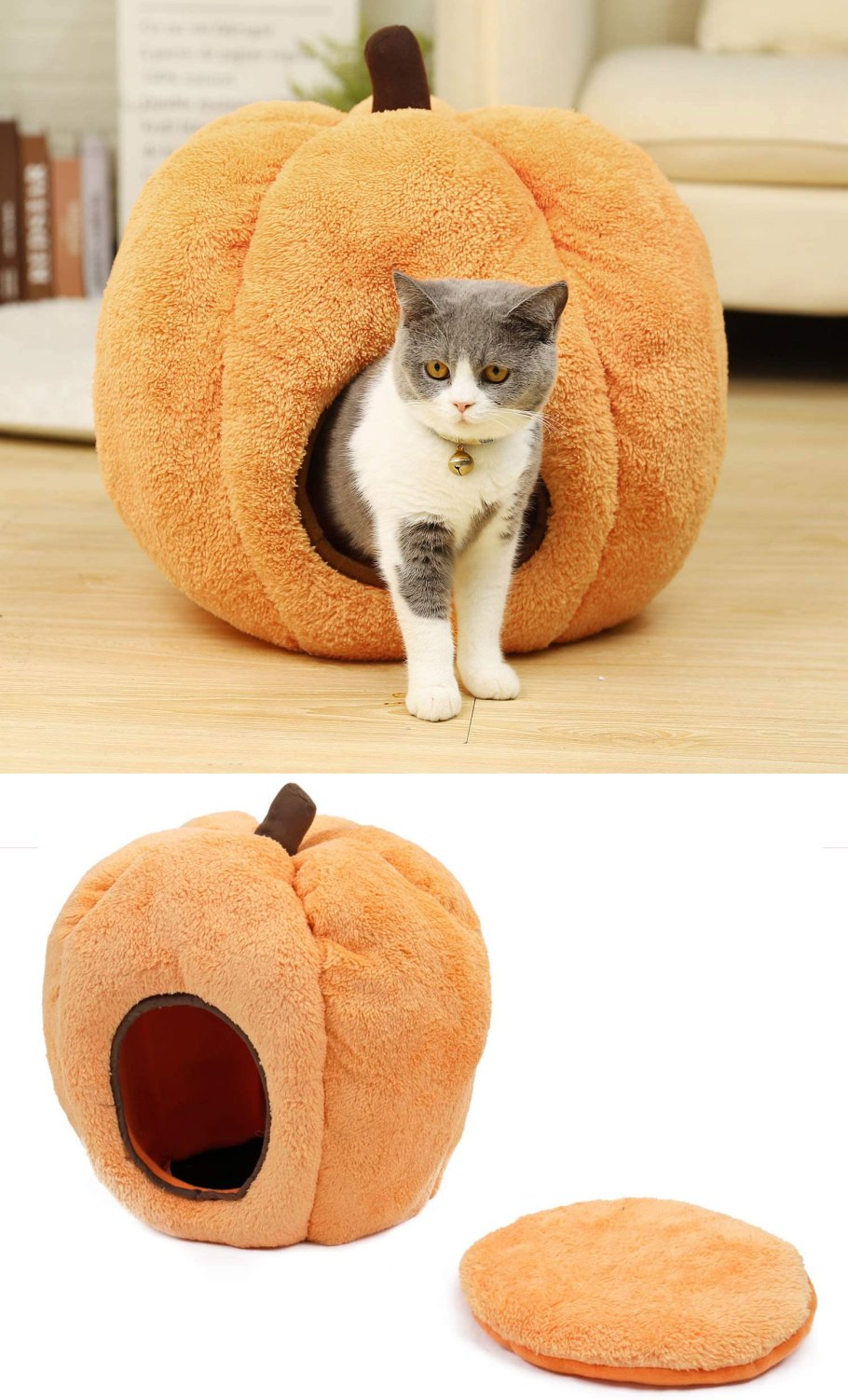 cat bed cheap
