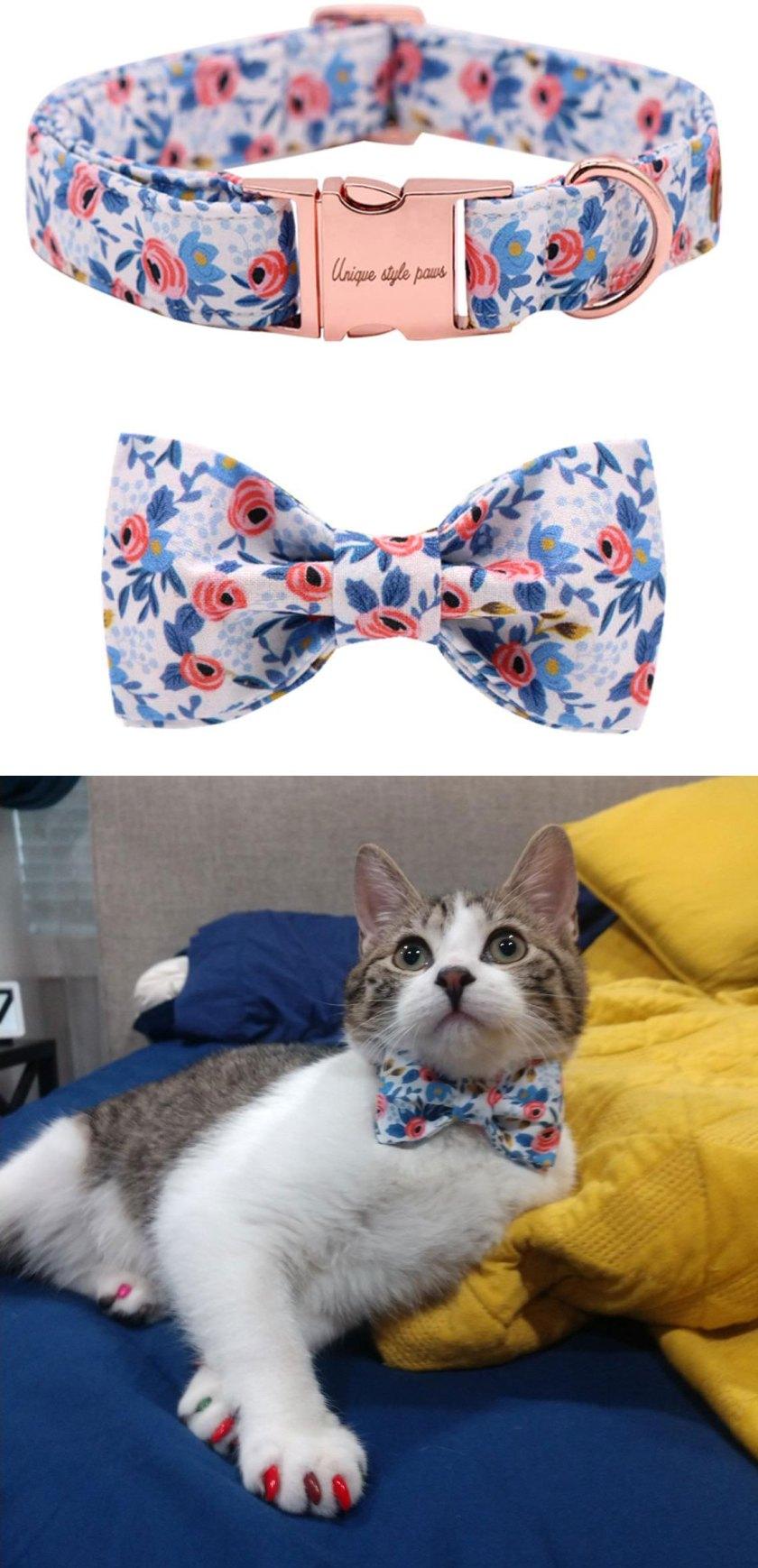 cool cat gear