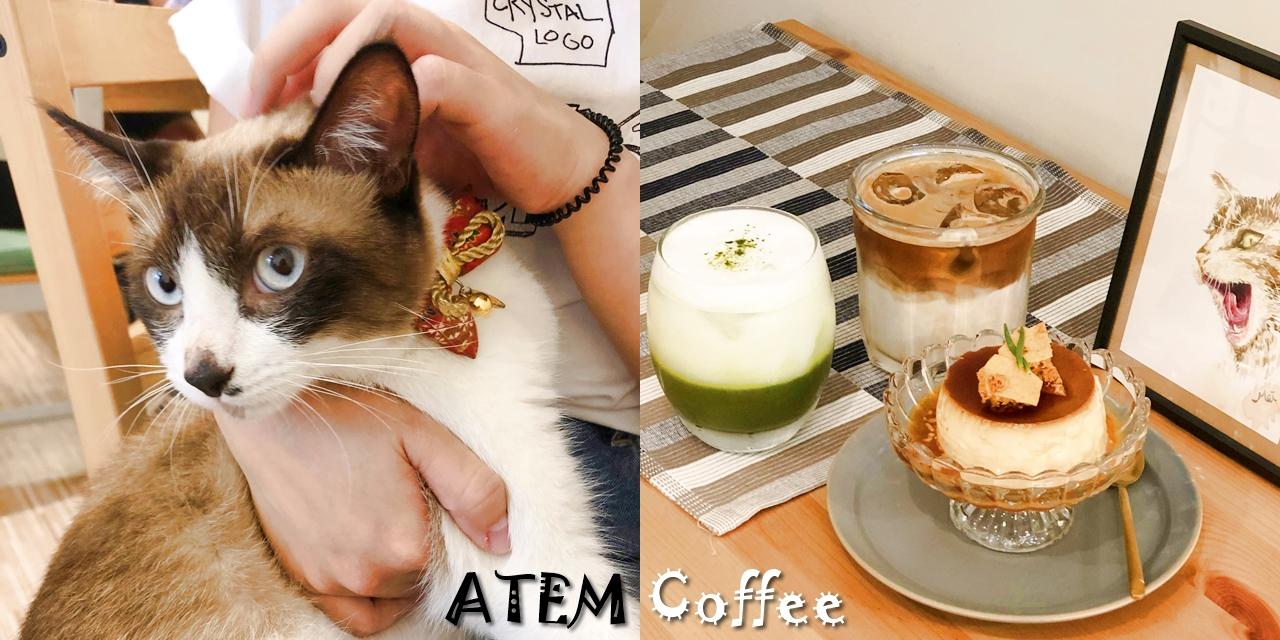 【台南美食】新店報報!!!每日限量甜點超秒殺!!!《ATEM Coffee》還有可愛店貓蚵仔煎陪你下午茶 |下午茶推薦| |手沖咖啡| |台南咖啡店|
