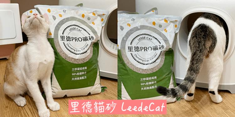 【寵物用品推薦】回購率95%!網路暢銷的礦砂《里德貓砂 LeedeCat》使用心得 |貓砂推薦| |礦砂分享| |貓咪用品| |貓砂評價|