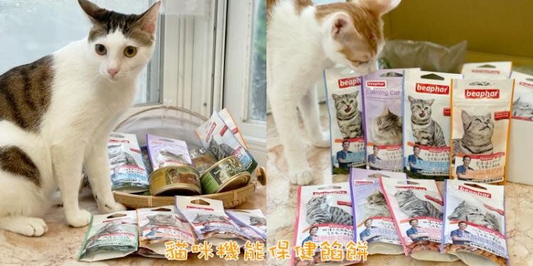 受保護的內容: 【寵物食品推薦】錢財來開箱!讓貓咪愛不釋口的貓零食餡餅《貓咪機能保健餡餅》|貓咪零食| |寵物零食|