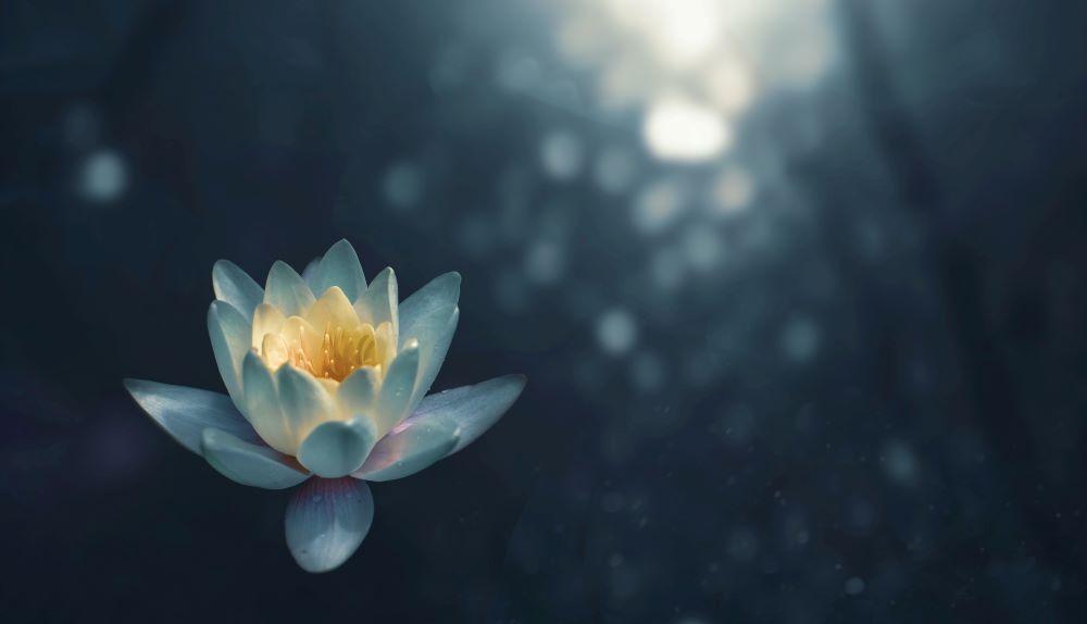 yoga philosophie spiritualité