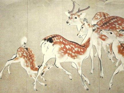 art-deer-japan-nature-favim-com-1973752