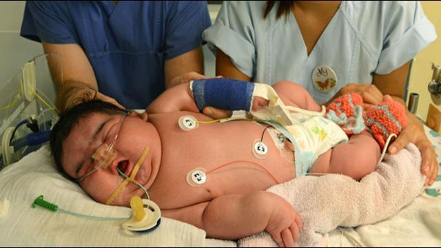 6kg German newborn