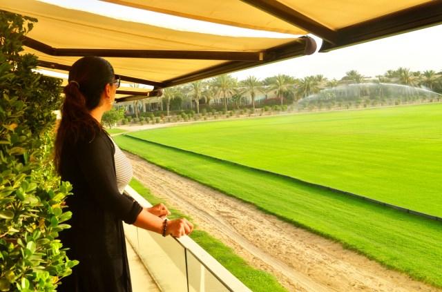 Rio looking over the Polo Fields @ Desert Palm Resort, Dubai: f/9; Exposure 1/350sec ISO-500