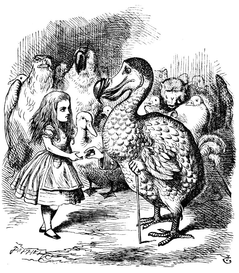 alice in wonderland Dodo