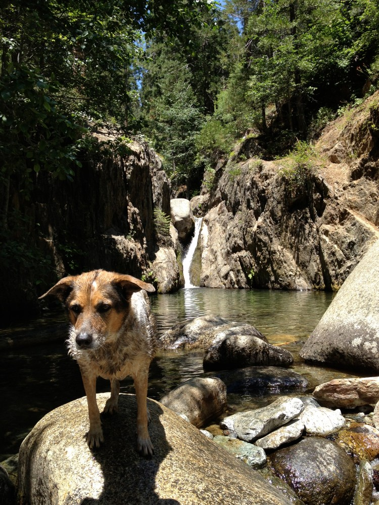 Moses Gulch Campground (5/6)