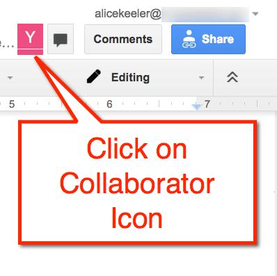 Google Doc Collaborator Icon