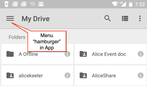 hamburger in app