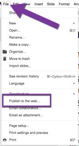 File Menu Publish to the Web