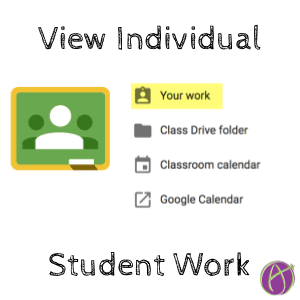 Google Classroom view individual student work
