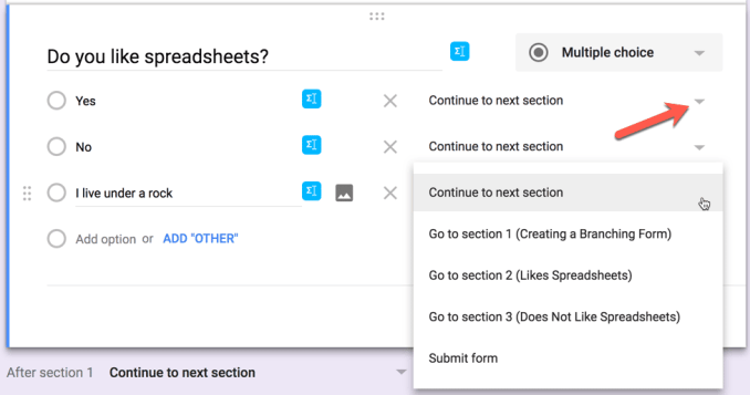 Google Forms branching options