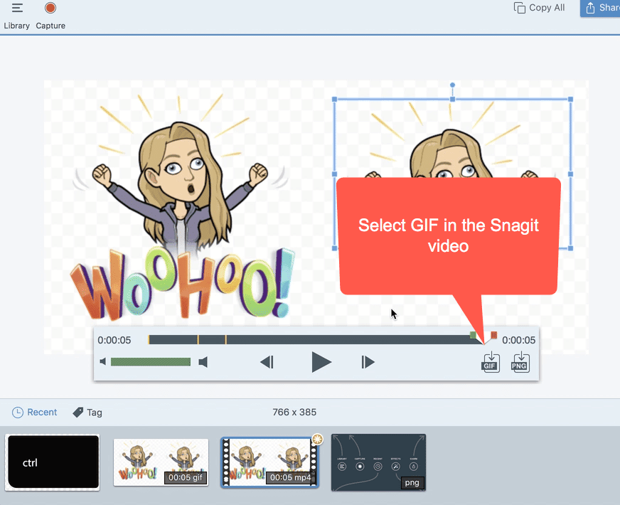 Create an animated GIF in Snagit