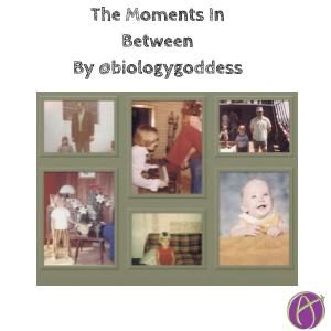 The Moments In Between By @biologygoddess