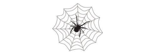 Some Arachnid Lore