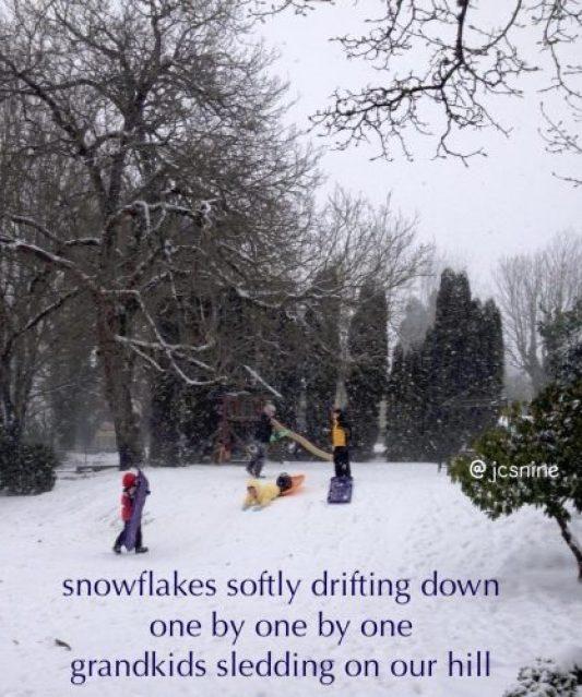 snowflakes-sledding