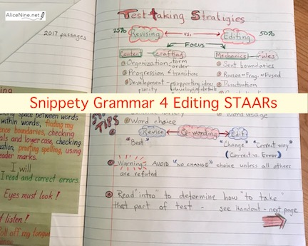 Snippety Grammar 4 Editing STAARs