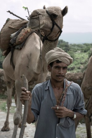 camel-man