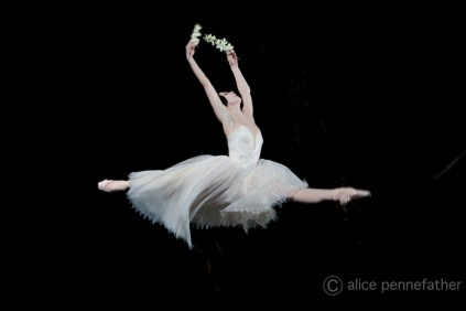 Giselle 2014 - Courtesy of ROH
