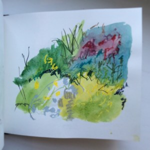 mixed media garden drawing sketchbook Aice Sheridan