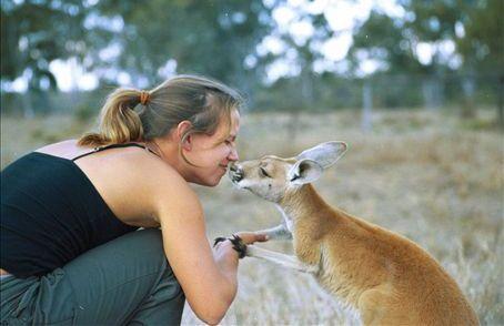 Kangaroos - Human 02