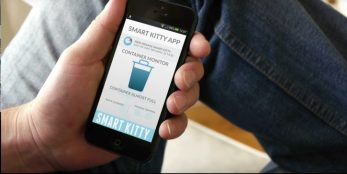 smart-kitty-application-725x365
